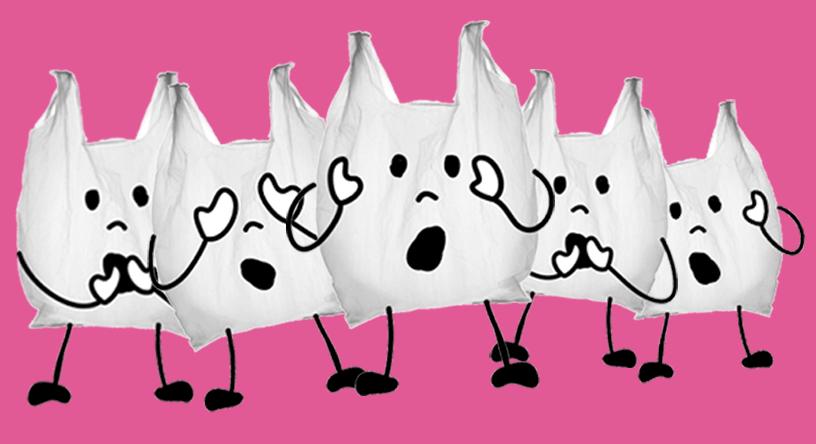 As sacolas são tão terríveis assim?